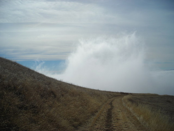 Sneaking<br /> <br /> Cloud of fog creeping along the trail behind me.