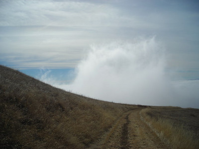 Sneaking  Cloud of fog creeping along the trail behind me.