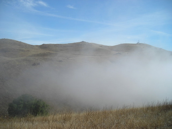 Clearing fog<br /> <br /> I wasn't expecting it, but as I crested the steepest part of the trail I emerged from the fog layer and saw blue sky.