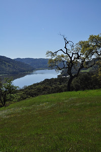 Coyote Reservoir
