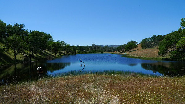 Jackrabbit Lake