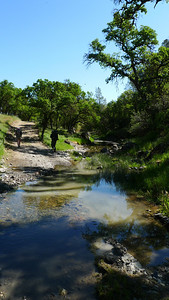 There was tons of water this year. Couldn't hike along Orestimba creek without getting wet feet. I hiked in my chacos most of the day.