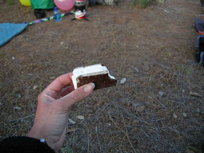 Freeze Dried ice cream sandwich.<br /> <br /> Not so ice creamy, really.
