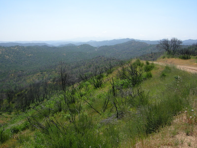 Up on County Line Road - view to the South