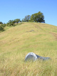 My tent in the tall grass. It made Dave sneeze a lot (the grass, not the Tarptent)