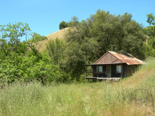 Wilson Camp<br /> An abandoned ranch/homestead within park boundaries (with a good spring, too!)