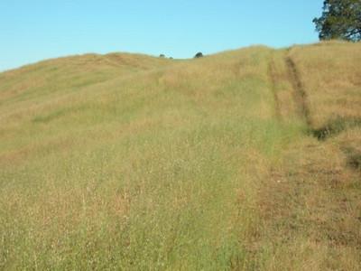 Rolling hills along the ridge with Vasquez peak.