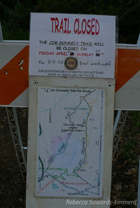 A big trail work event was going on when I arrived. About 40 or so people were heading up to work on the new Jim Donnelly Trail route. Switchbacks, hurray! Someone asked if I wanted to join them but I was too intent on a training hike today. Thanks for all the hard work! It's nice to see these trail improvements, my knees very much appreciate it!