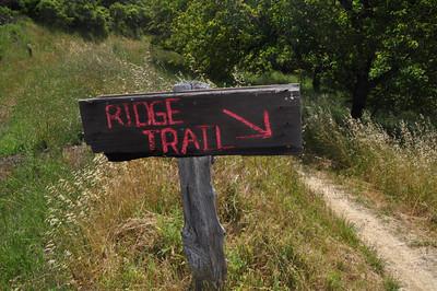 Fancy trail sign