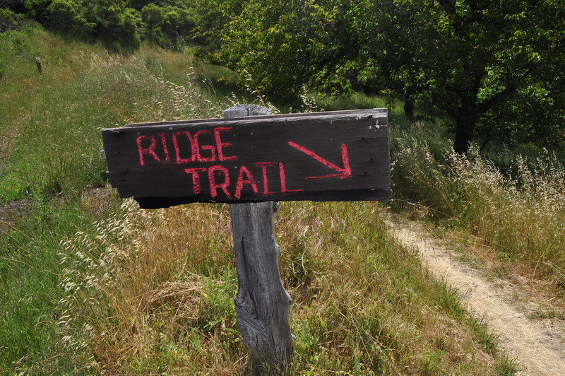 Fancy trail sign