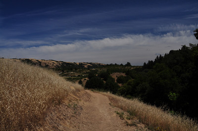 Bay Area Ridge Trail views