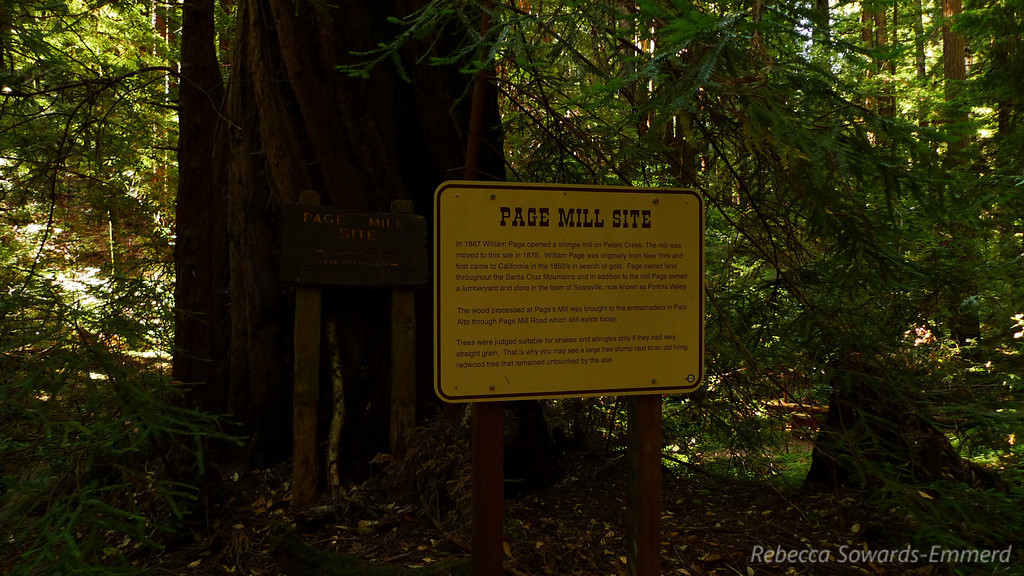 """Never knew that the """"Page Mill Road"""" was actually an access road for, well, the Page Mill. This is the original site."""