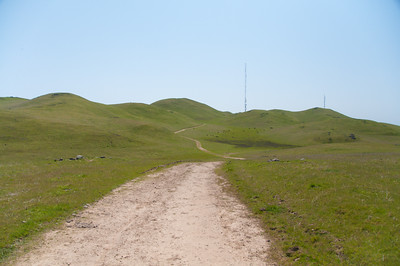 In the summer, this would be a miserably hot hike. But in the spring time it's lovely. I didn't see a soul between Monument and Mission peaks (other than the cows, that is).