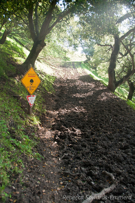 Yeah, I'm sure bikes could go on this trail anyways.