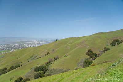 HIllsides are still green, for now. Fremont below.