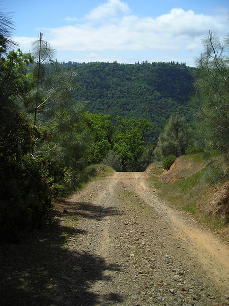 Steeply down the shortcut - often referred to as the steepest trail in the bay area.