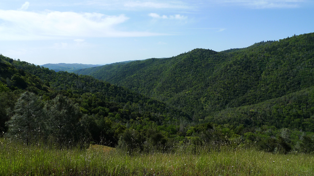 After climbing up the Shortcut a ways the views get good.