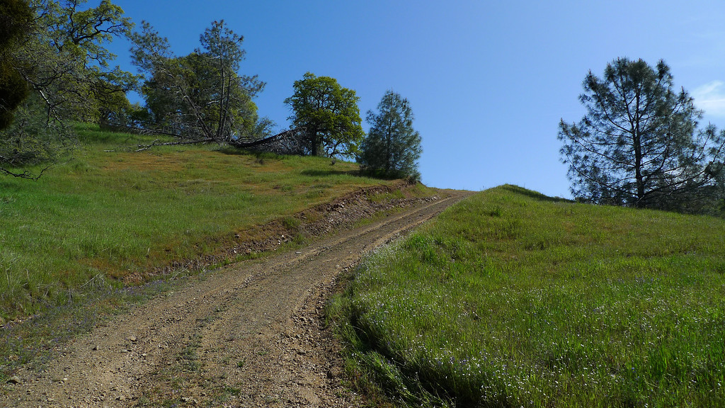 Still steep. This climbs about 1700 ft in 1.3 miles.