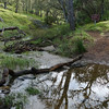 Creek crossing near Frog  Lake