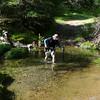 crossing Coyote Creek - wading method