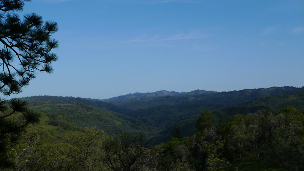 Mt Hamilton in the distance. Nice clear day.