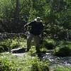 Crossing Coyote Creek - hopping method