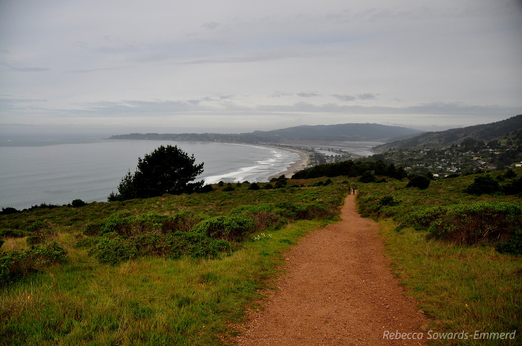 Looking back on Stinson Beach from the Dipsea Trail