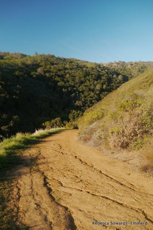 I'm on my way up the first ridge. A 1500 ft climb in ~2 miles.