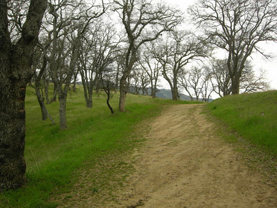 Fire road trail