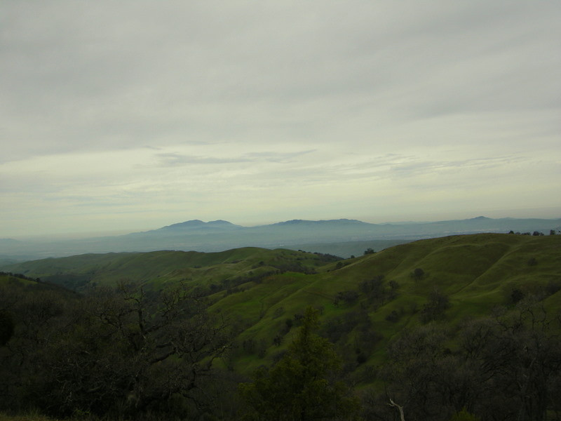 Mt Diablo and Rocky Ridge<br /> <br /> Rocky Ridge looks smaller now. Piece of cake. We're heading up the other side of Williams Gulch up the 'Big Burn'