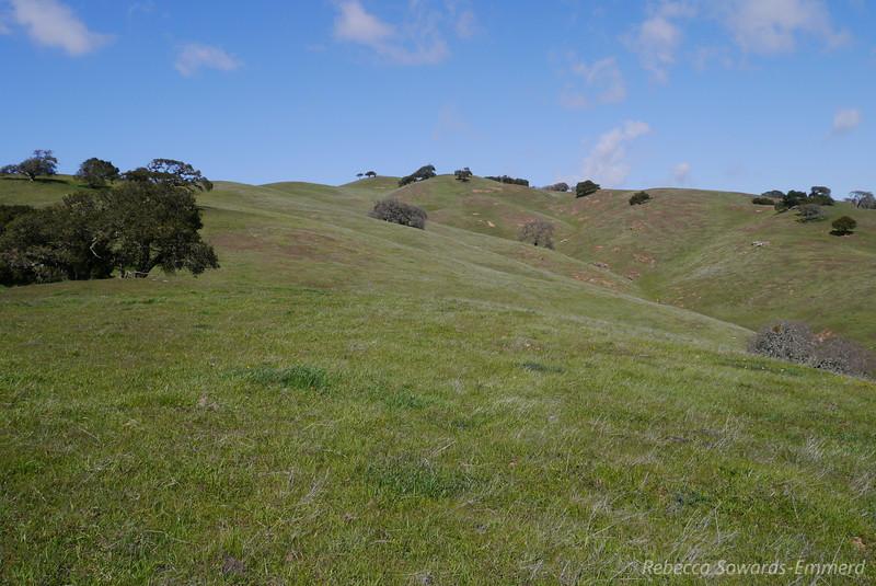 Looking back on Spike's peak as we descend.