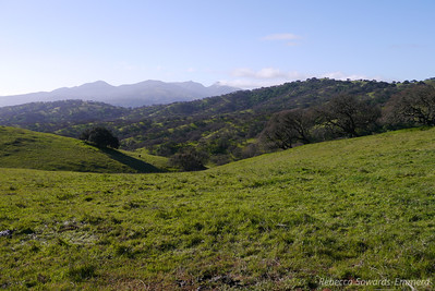 Diablo Range to the south