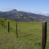 Park boundary fence