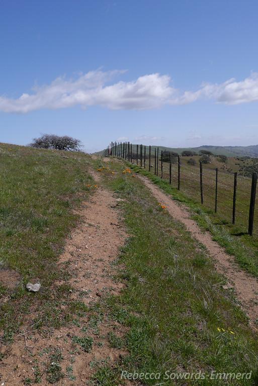 South Boundary Trail