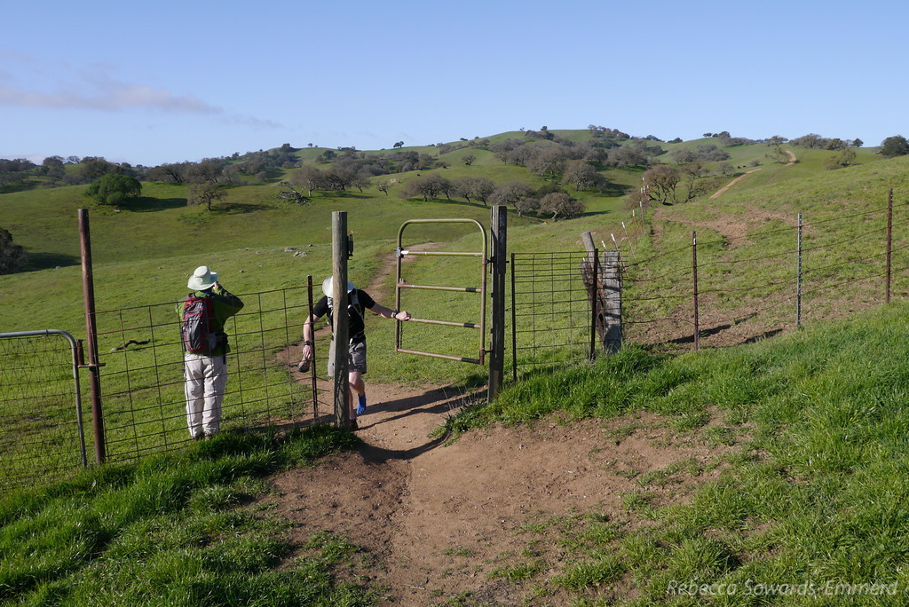This is cattle grazing land so there are a lot of gates to pass through.