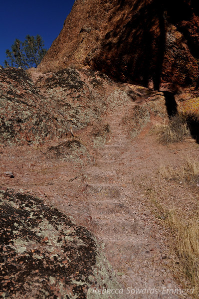 More steps in the rock. The High Peaks trail in Pinnacles is a feat of trail engineering and a lot of fun!