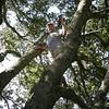 Vaudesir monkeys around and finds a cache