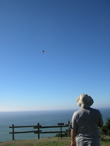 Kite Flying!