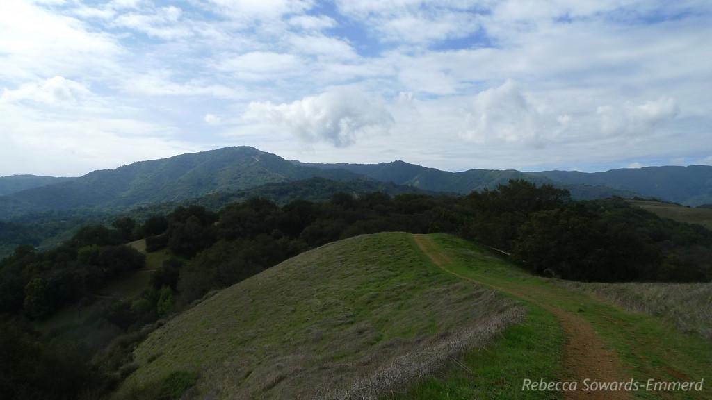 Looking back on Loma Prieta, high point of the Santa Cruz Mountain range.