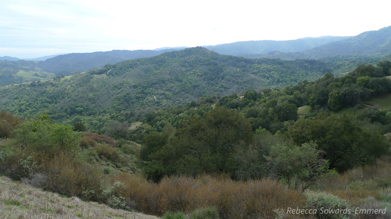 Looking across at the ridge I just hiked over - a few switchbacks are visible across the way.