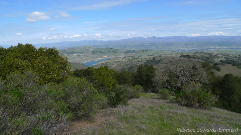 Another view towards Calero and Mt Hamilton