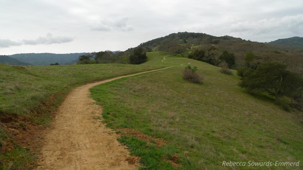 Mayfair Ranch Trail