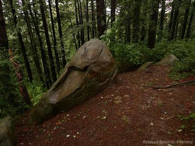 Sandstone boulders on Redwood Peak