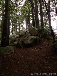 The summit of Redwood Peak