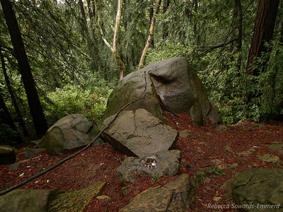 Sandstone boulders on Redwood Peak. No big view from this peak but it's a peak nonetheless.