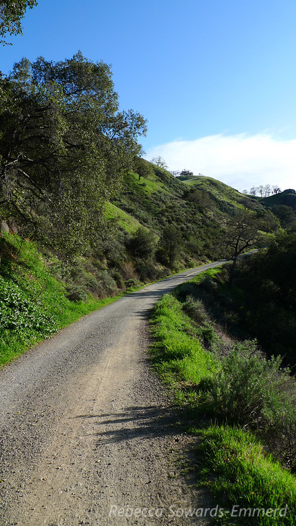 Camp Ohlone Road