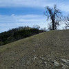 Rose Peak. Highest legally accessible point in Alameda County. There is another peak a few feet higher but it is on private land.