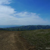 Typical Ohlone trail post.