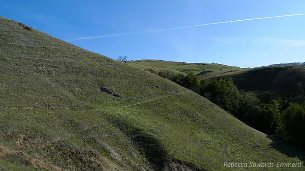 Nice stretch of trail..