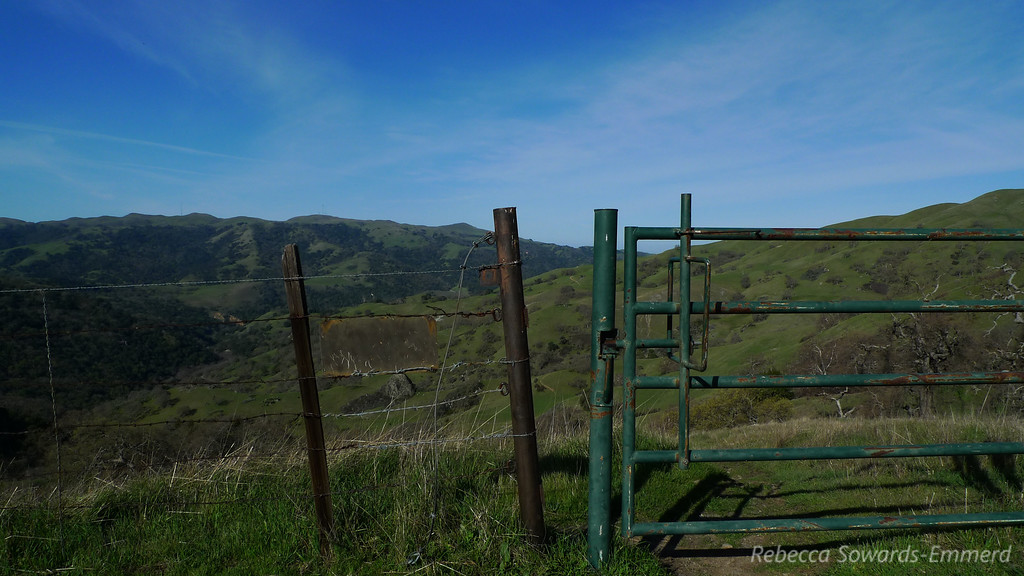 Many gates along the Ohlone Trail